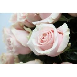 Le bouquet QUICKSAND
